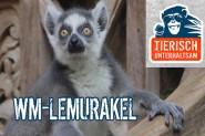 lemurakel
