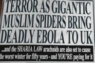 Ebola-Hoax