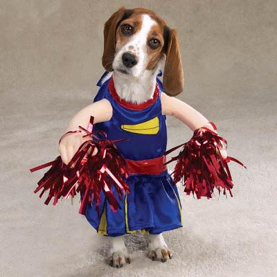 Halloween Cute Dog